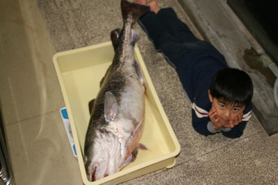 鱈と背比べ.jpg