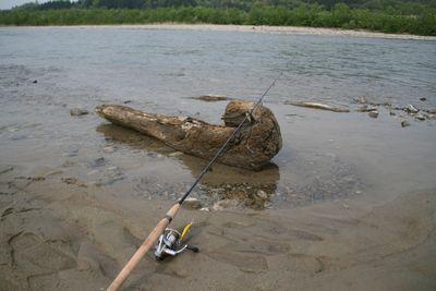 荒川の水質.jpg