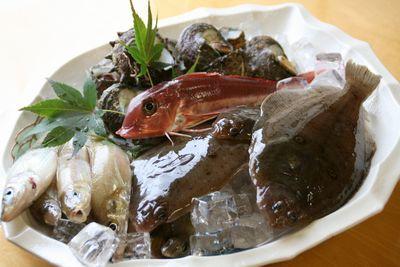 日本海の魚.jpg