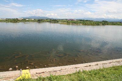 漁区最下流(河口付近).jpg