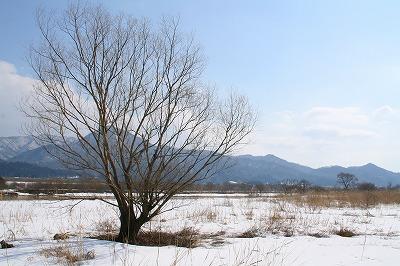 荒川の風景.jpg