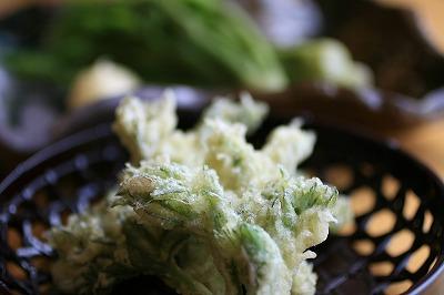 タラの芽の天ぷら.jpg