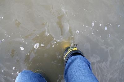 濁度50の水質.jpg