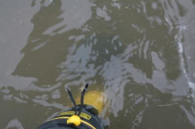 荒川本流の水質.jpg
