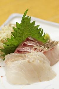 鯛とスズキの刺身.jpg