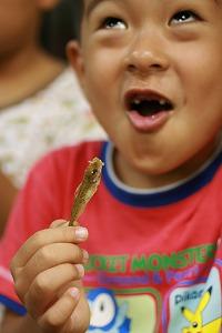 豆アジを食べる2号.jpg