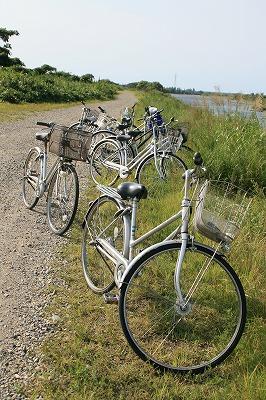 荒川で自転車.jpg