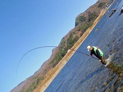 荒川の鮭ヒット.jpg