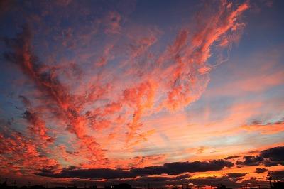 荒川の夕景.jpg
