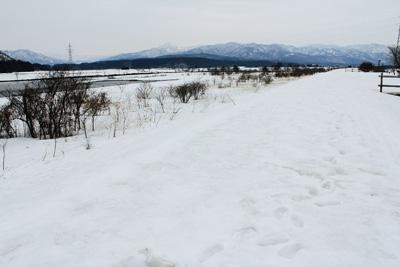 20120309_3.jpg