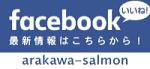荒川サケ釣りFBページ